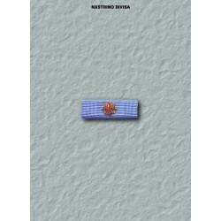 Nastrino divisa CSG